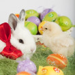 Foto Stock: Cute bunny and small baby chicken, surrounded by Easter eggs