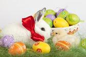 Baby coniglio e pollo bambino baciare davanti a un cesto pieno o — Foto Stock