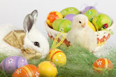 Cute bunny and baby chicken sitting on grass with Easter eggs in — Zdjęcie stockowe