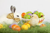 Small baby chicken looking at a cute white rabbit with Easter eg — Stok fotoğraf