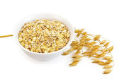 Oatmeal with oat stem — Stock Photo