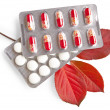 Medications with red leaves — Stock Photo
