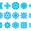 15 Vector Snowflakes Set — Stock Vector