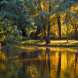Stock Photo: Golden pond in Lazienki Park in Warsaw