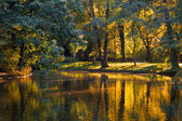 Golden pond in Lazienki Park in Warsaw — Stock Photo