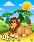 Cute lion with bone — Stock Photo