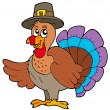 Thanksgiving turkey with hat — Stock Vector