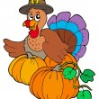 Stock Vector: Thanksgiving turkey with pumpkins