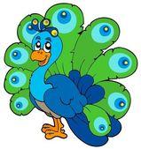 Cartoon peacock — Stock Vector