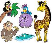 Set of African animals 2 — Stockvector