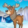 Winter theme with reindeer - Stock Photo