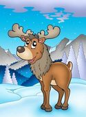 Winter theme with reindeer — Stock Photo