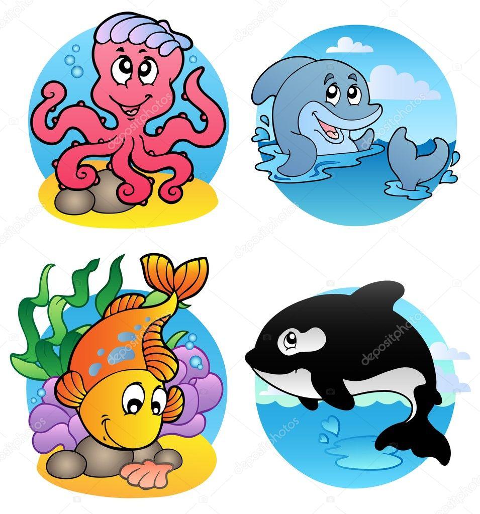 各种水生动物和鱼类