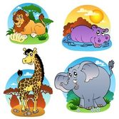 Various tropical animals 1 — Vector de stock