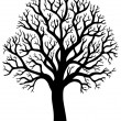 Silhouette of tree without leaf 2 — Stock Vector