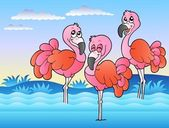Three flamingos standing in water — Stock Vector