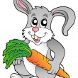 Cute bunny holding carrot — Stock Vector #4915570