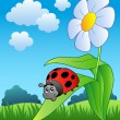 Cute ladybug with flower - Stock Vector