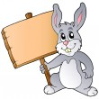 Cute bunny holding wooden board — Stock Vector