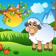 Cute sheep on spring meadow — Stock Vector