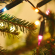 Christmas tree — Stock Photo #4043513