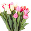Bouquet of fresh tulips — Stock Photo