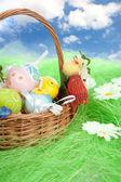Huevos de pascua en cesta — Foto de Stock