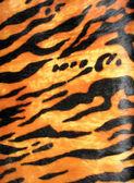 Tiger skin background, fashion animal diversity. — Stock Photo