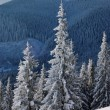 Winter landscape in mountains — Stock Photo #4075229