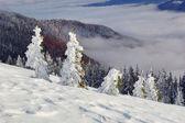 Winterlandschaft in bergen — Stockfoto