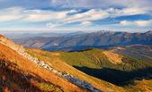 Paysage de montagne d'été — Photo