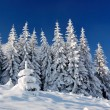 Winter landscape in mountains — Stock Photo #4390645