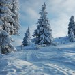 Winter landscape in mountains - Stock Photo