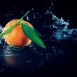 Orange on a black background with water — Stock Photo #5257021