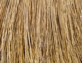 Close-up view at broom bristle. Background photo. — Stock Photo
