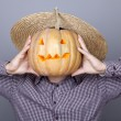 Funny men showing a pumpkin. — Stockfoto