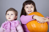 Two little sisters with pumpkin — Stock Photo