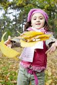 Ragazza carina in autunno parco — Foto Stock