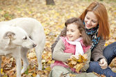 Two sisters sitting on the leafs in the park and looking at dog. — Stock Photo