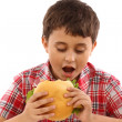 Boy eating a big hamburger — Stock Photo #5027984