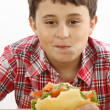 Stock Photo: Boy eating a big hamburger