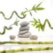 Zen composition — Stock Photo