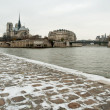 Notre dame de Paris with snow on the dock — Stock Photo