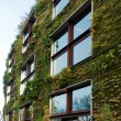 Vegetal wall on Branly museum in Paris - Stockfoto