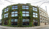 растительные стены на музей бранли в париже — Стоковое фото