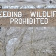 No Feeding Wildlife Sign — Stock Photo #4917803