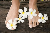 Woman legs with flowers Plumeria alba — Stock Photo