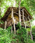 Bungalow giungla isola di phi phi, thailandia — Foto Stock