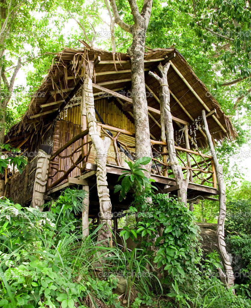Ko Phi Phi Bungalows: Jungle Bungalow In Phi Phi Island , Thailand