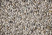 Close-up Pebble stones background — Stock Photo